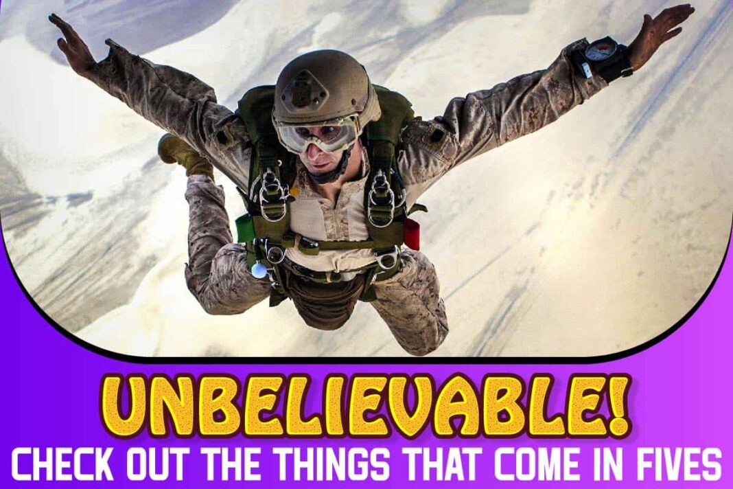 Unbelievable! Check Out The Things That Come In Fives