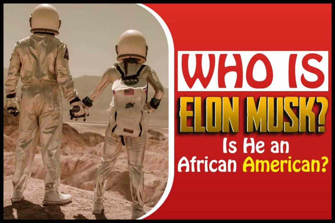 Who Is Elon Musk