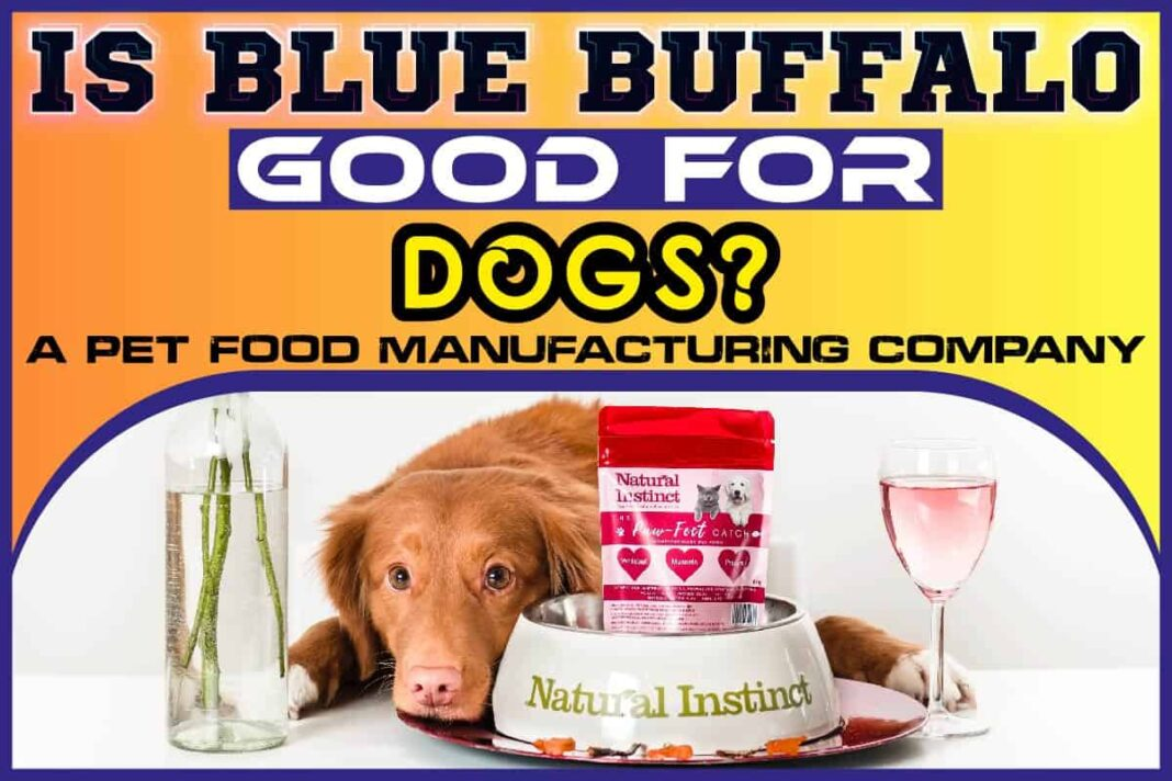 Is Blue Buffalo Good For Dogs